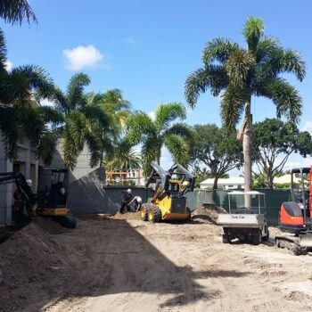 Ibis Phase II Construction Foxtail And Coconut Palm Installation